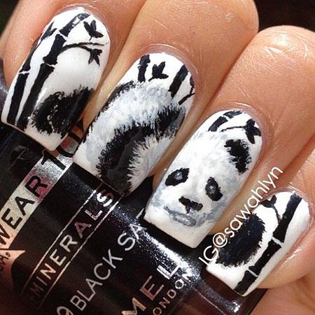Panda Photo Animal Halloween